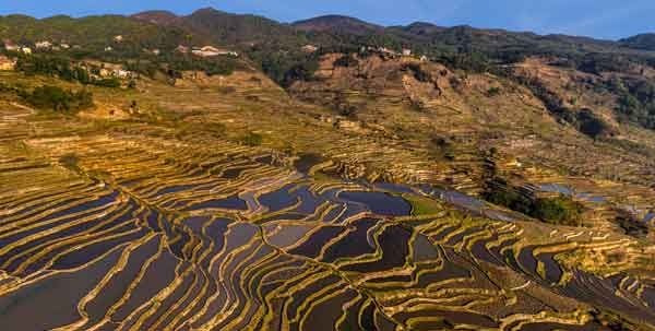 Magical rice fields in Yuanyang